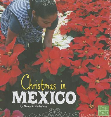 Christmas in Mexico By Enderlein, Cheryl L.